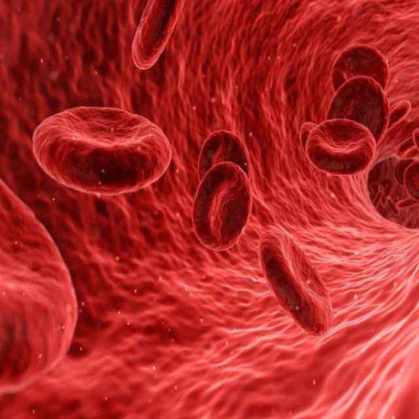 Jak rozrzedzić krew