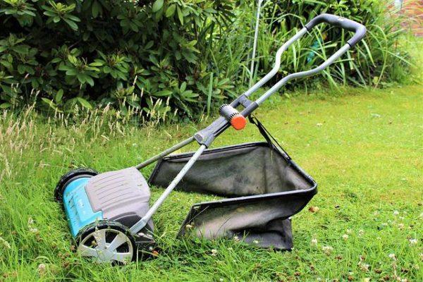 kosiarka wypełniona trawą z której robi się nawóz