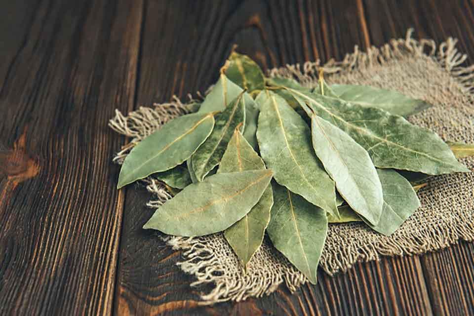 Rozsypane liście laurowe w szafkato idealny sposób na mole
