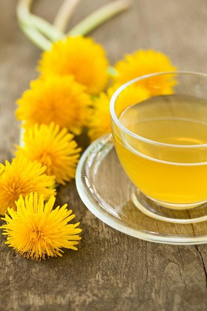 ziołowa herbata z mniszka lekarskiego obniża wysoki poziom kreatyny