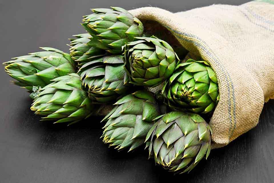 Spożywanie karczocha zmniejsza poziomu cholesterolu