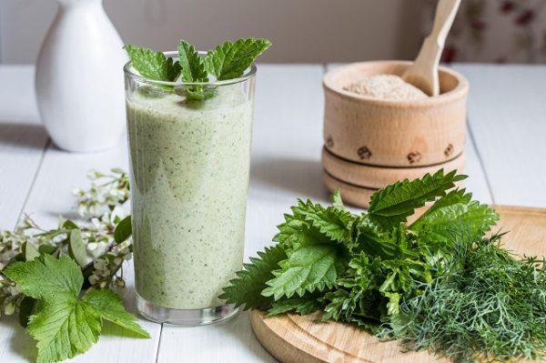 Warto pić ziołowe koktajle z pokrzywy, aby poprawić funkcjonowanie narządów